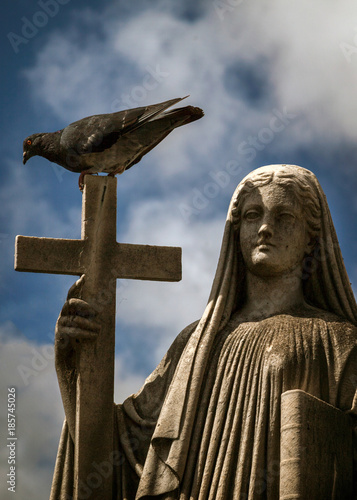 Fotobehang Buenos Aires Bird perch on a cross and statue of a holy woman in cemetery