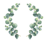 Watercolor vector wreath with silver dollar eucalyptus leaves and branches. - 185786248