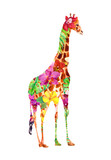 Giraffe in exotic flowers (orchid, hibiscus) and tropical leaves. Watercolor floral tropic - 185816045
