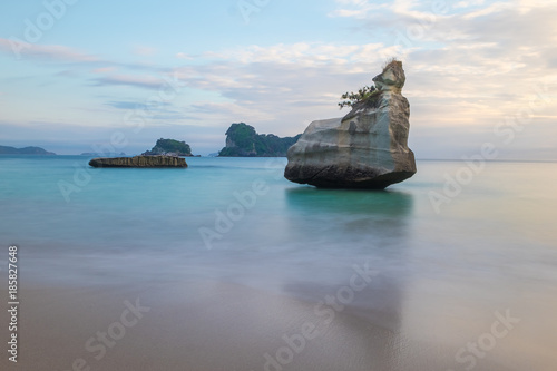 Foto op Plexiglas Cathedral Cove Cathedral Cove Beach in New Zealand