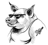 Cool pig in sunglasses. Black and white ink illustration - 185840487