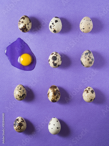 Quail eggs on purple background. Shot from above. Food mishap - 185844048