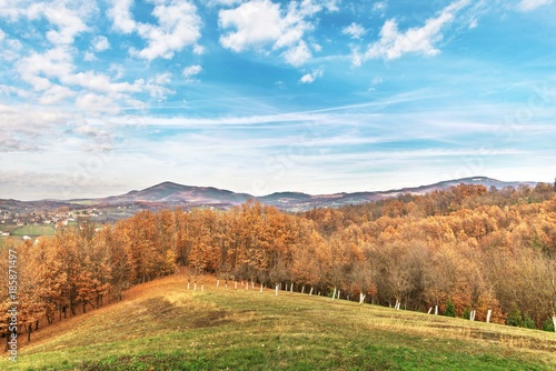 Foto op Canvas Pool nature rural landscape with green grass, orange autumn forest trees and hills in the distance with blue sky clouds.
