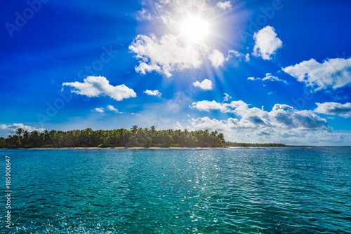 Tuinposter Groen blauw magical paradise beach of the Caribbean sea