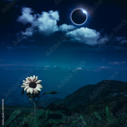 Aluminium Nachtblauw Scientific natural phenomenon. Total solar eclipse with diamond ring effect.