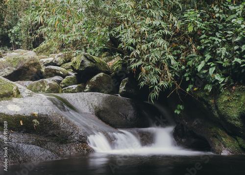 Foto op Canvas Zen Relaxing zen-like long exposure of a small stream in the dense tropical rainforest of Rio de Janeiro, Brazil