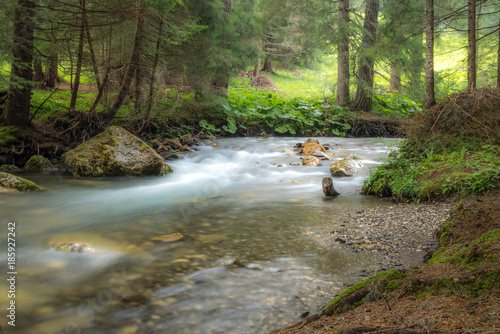 Papiers peints Rivière de la forêt torrente