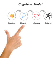 Components of Cognitive Model