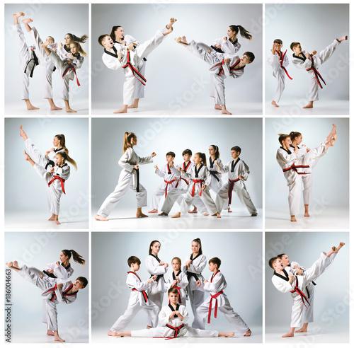 Foto Murales The studio shot of group of kids training karate martial arts