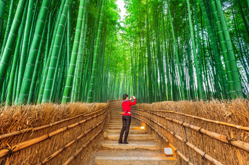 Woman take a photo at Bamboo Forest in Kyoto, Japan.