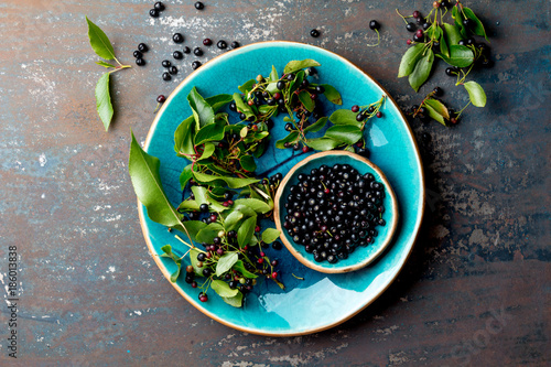 Superfood MAQUI BERRY. Superfoods antioxidant of indian mapuche, Chile. Bowl of fresh maqui berry and maqui berry tree branch on metal background, top view. - 186013838