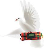 colomba bianca con dinamite a tempo  - 186029226