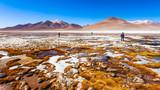 Lake, Bolivia Altiplano - 186038684