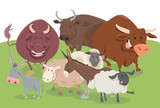 comic farm animal characters group