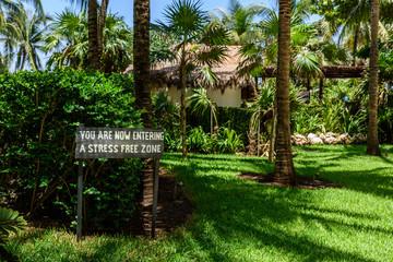Palm Alley near Hotel, Cancun, Mexico