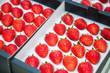 Fresh organic strawberries for sale in market