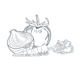 Tomato onion and carrot hand draw icon vector illustration graphic design - 186083483