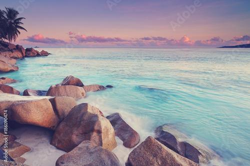 Tuinposter Lavendel tropischer Strand - Seychellen