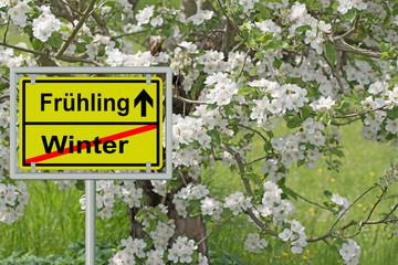 Frühlingsanfang, Winterende, Apfelblüten