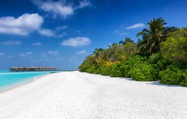 Traumstrand der Malediven mit Palmen, feinem Sand, tiefblauem Himmel und türkisem Meer