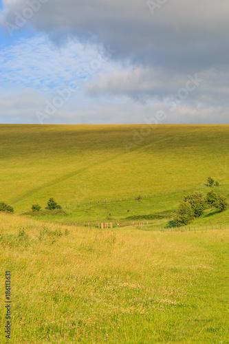 Poster Donkergrijs Green Sussex Landscape