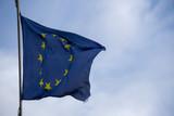 European waving blue flag in rome - 186126205