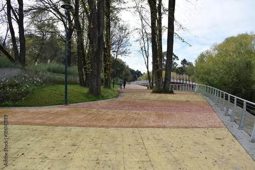 Foto Murales Camino parque