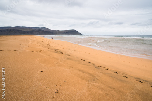 Landscape view of a sandy beach in Iceland with mountains in the distance.  - 186142879