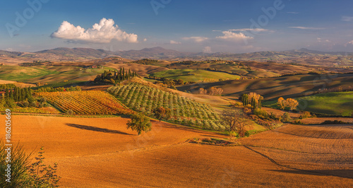 Deurstickers Toscane Autumn, panorama in Tuscany, rolling hills, woods and fields on sunset. Rural landscape. Italy, Europe