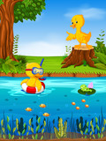 Two duck and frog in the river - 186209844