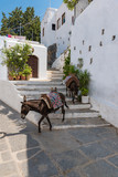 Donkey taxi – donkeys used to carry tourists to Acropolis of Lindos (Rhodes, Greece) - 186210230