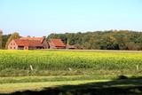 Bauernhof - 186213414