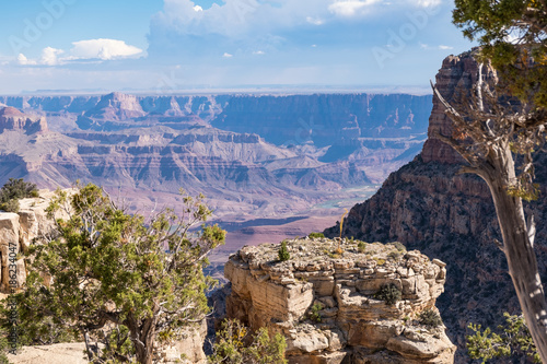 Papiers peints Cappuccino Grand Canyon South Rim