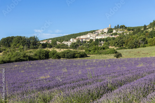 Fotobehang Lavendel Le village perché de Banon dans les Alpes-de-Haute-Provence