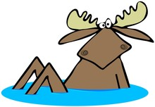 A Startled Bull Moose Sitting Upright In Some Water Sticker
