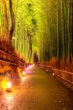 Fototapeta Bamboo - Las bambusowy w Kyoto © Piotr