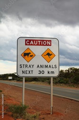 Fotobehang Kangoeroe Caution Stray Animals Next 30 km