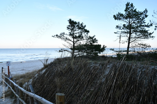 Foto op Canvas Grijze traf. winter impressions from debki, a small fishing village on the polish baltic sea, here the great panoramic view of the beach, poland, europe