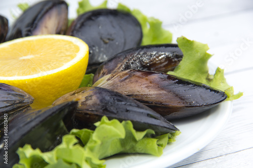 Foto Murales Steamed mussels