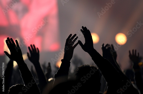 people at live concert - 186317836