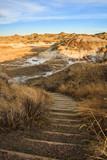 A trail anong the badlands in Dinosaur Provincial Park