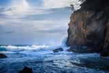 Ile de la Réunion, tournesol mexicain © CORINNE