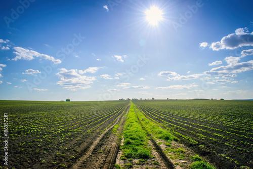 Aluminium Lente Agriculture field