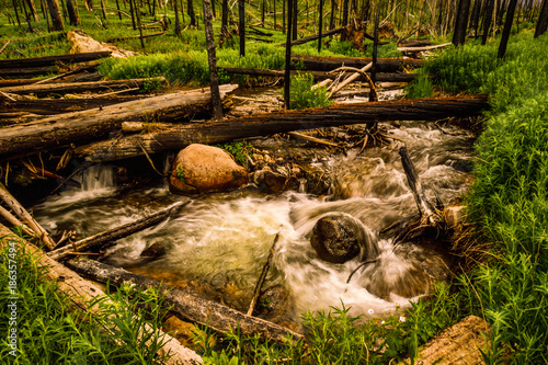 Mountain Stream Frothy Water © Daniel