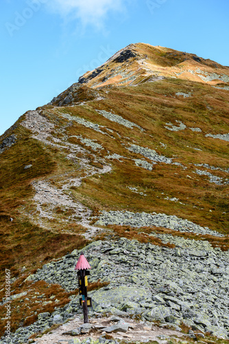 Tuinposter Donkergrijs slovakian carpathian mountains. sunny hill tops in summer