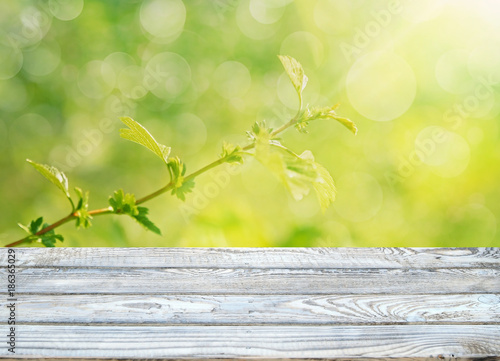 spring background with wooden table - 186365029