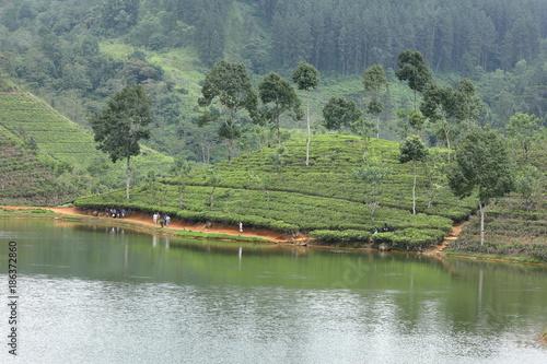 Fotobehang Olijf Stauseen und Wasserversorgung in Sri Lanka