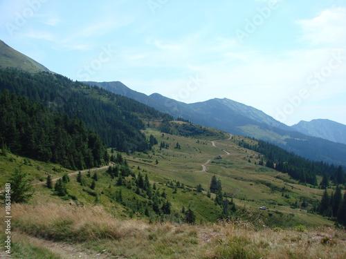 Foto op Aluminium Khaki A panorama of the mountain range of the Marmaros of the Ukrainian Carpathians.