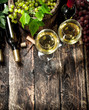 Wine background. White and red wine with branches of grapes.