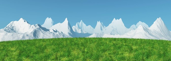 Alpine meadow. panorama of a green grass field against a background of snowy peaks.
